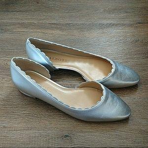 Silver Scallop Flata